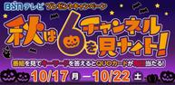 BSNテレビ プレゼントキャンペーン『秋は6チャンネルを見ナイト!』イメージ