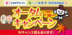 ココカラファイン・クスリのコダマ・BSN 2018オータムキャンペーン