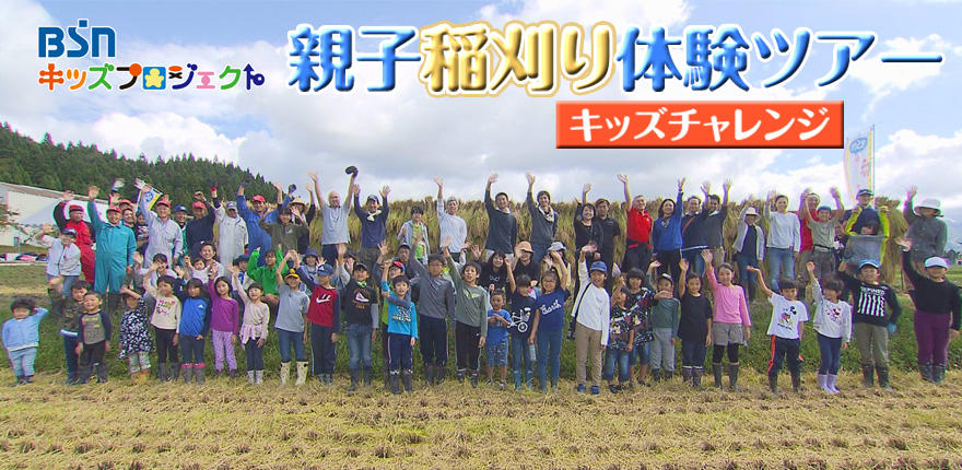 キッズチャレンジ親子稲刈り体験ツアー イベントレポートを公開しました。イメージ