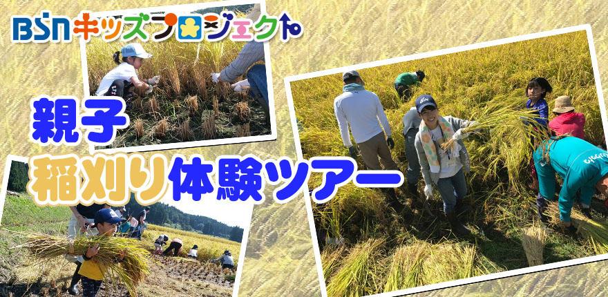 キッズチャレンジ親子稲刈り体験ツアー