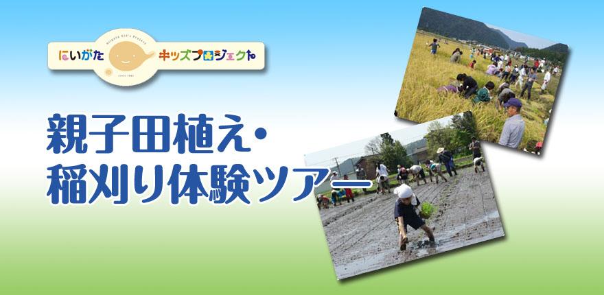 キッズチャレンジ親子田植え・稲刈り体験ツアー
