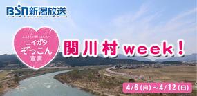 ニイガタぞっこん宣言「関川村week!」