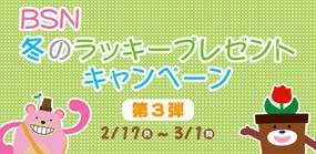 BSN冬のラッキープレゼントキャンペーン【第3弾】