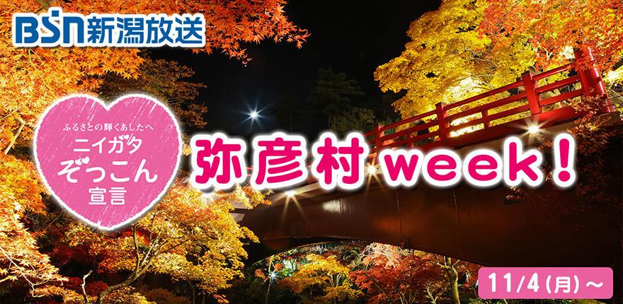 ニイガタぞっこん宣言「弥彦村week!」イメージ