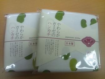 20120626-obi1.JPG