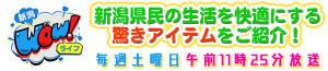 テレビ番組|新潟WOW!ライフ