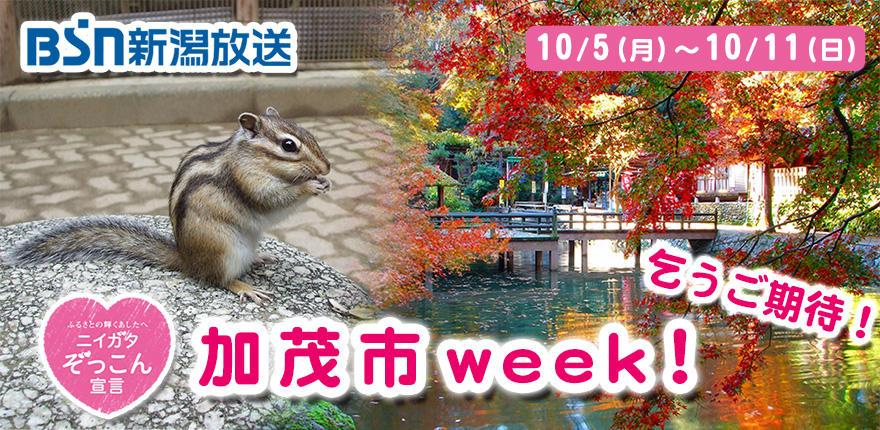 0850_ニイガタぞっこん宣言「加茂市week!」