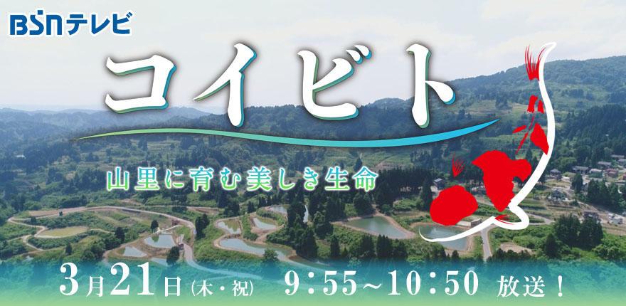 BSNスペシャル「コイビト-山里に育む美しき生命-」イメージ