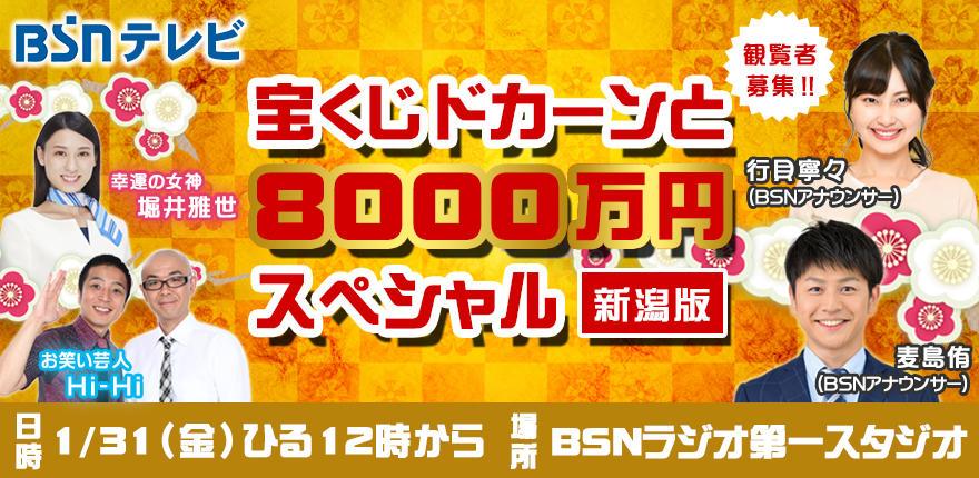 宝くじドカーンと8000万円スペシャル ~新潟版~イメージ